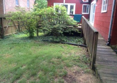 Zen Garden Before - 1